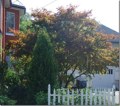 Autumn has begun!